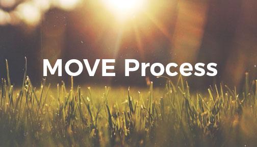 MOVE Process