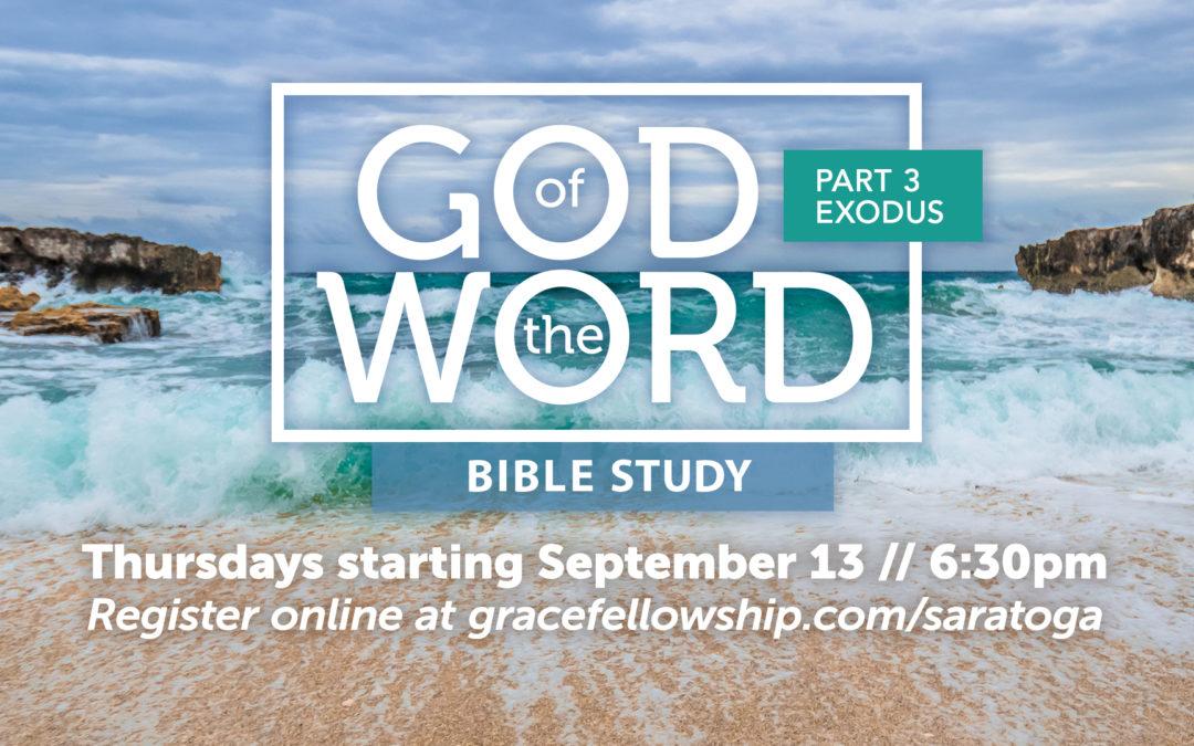 God of the Word: Beginnings