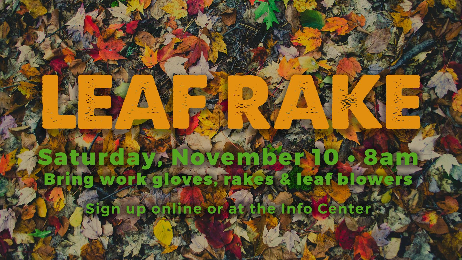 Halfmoon Leaf Raking Saturday November 10, 2018