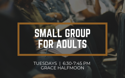 Halfmoon Small Group for Adults // Fall 2020